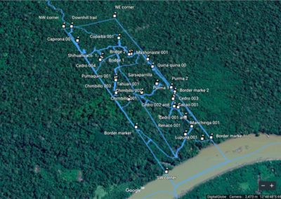 trees-paths-1200x645