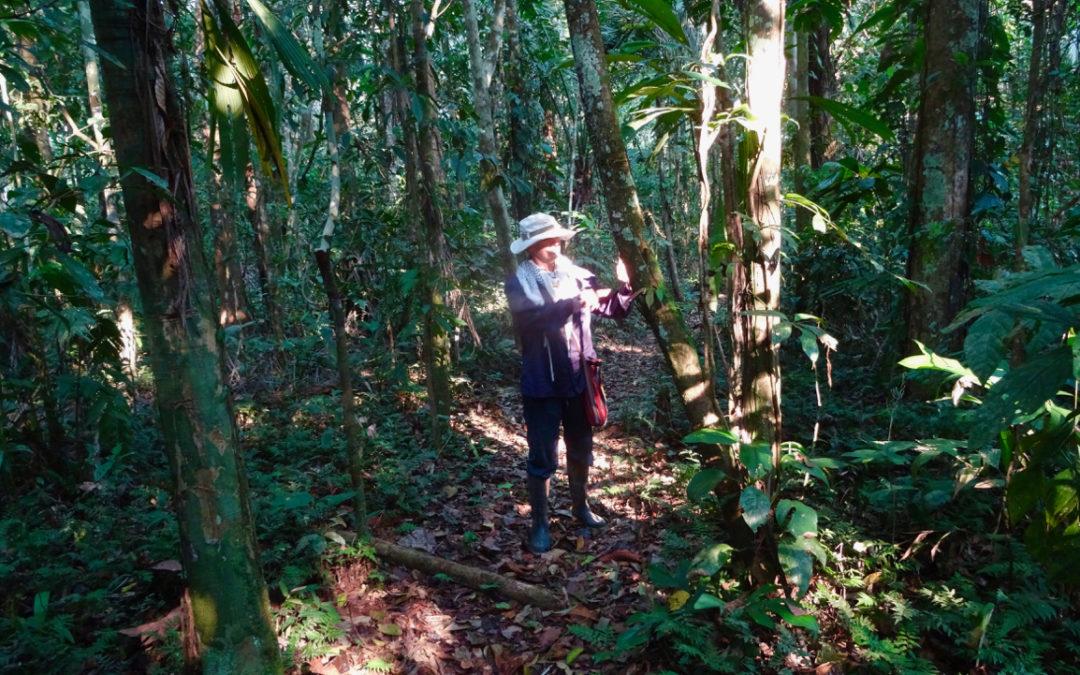 A Day at Sipapu
